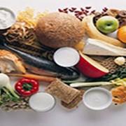 Система организации и обеспечения безопасности в производстве и переработке пищевых продуктов фото