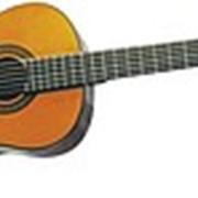 Гитара Washburn C40 фото