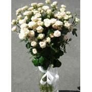 Букеты цветов,красивый букет №4, цветы живые, розы белые, купить, заказать, Киев фото