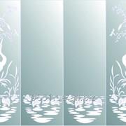 Зеркало для шкафов купе 00-52 фото