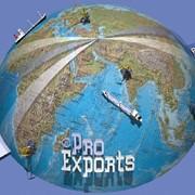 Услуги по организации экспорта фото