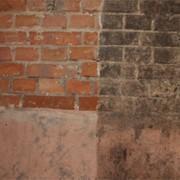 Удаление плесени, грибка. фото