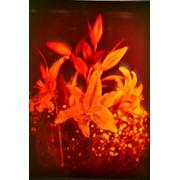 Голограмма художественная Лилии фото