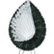 Пленки полипропиленовые фото