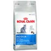 Корм для котов Royal Canin Indoor 10 кг фото