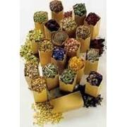 Семена пряно-ароматических культур, семена почтой фото