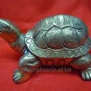 Статуэтка Черепаха из бронзы фото
