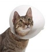 Ветеринарный воротник Trixie на липучке 30-37см / 14см фото