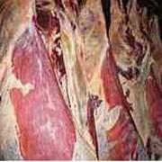Мясо говядина высшей категории фото