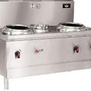 Индукционная плита Ecokitchen IND-A0W-B16*2FL фото