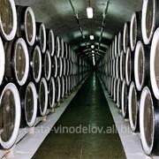 Оборудование для винодельческой промышленности фото