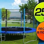 Батут NeoSport 252 см (с сеткой и лесенкой) фото