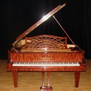 Рояль на концерт, аукцион, съемки фото