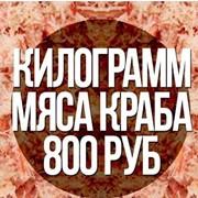 Оптово-розничная продажа морепродуктов фото