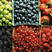 Анализы крови на пищевую непереносимость фото