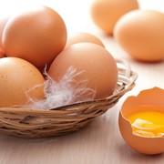 Яйцо коричневого окраса С0 фото