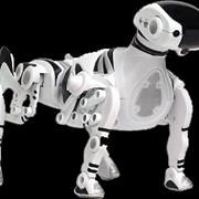 Робот Robopet фото