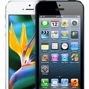 Apple Iphone 5 черный белый 64GB фото