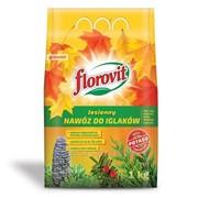 Удобрение Флоровит для хвойных растений осеннее 1 кг, (мешок) фото