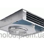 Воздухоохладитель ECO потолочный EVS-390 EVS-391 фото