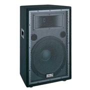 Пассивная акустическая система Soundking J215 фото