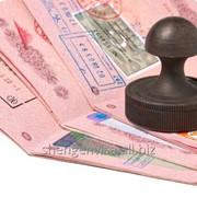 Шенген виза в чистый паспорт фото