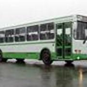 Автобусы пригородные фото