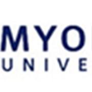 Курсы регулярного корейского языка в Университете Мёнджи фото
