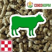 Комбикорм для молочных коров Purina фото