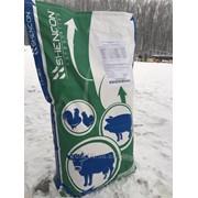 """Замінник молока """"Телятко.UA"""" (70% молочної основи,з 15 дня) фото"""