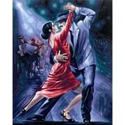Раскраска по номерам Танго в ночи фото