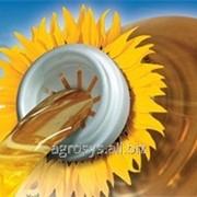 Семена подсолнечника НК Брио (NK Brio) фото