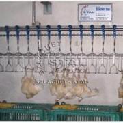 Оборудование для бройлеров, подвесной цепной конвейер фото