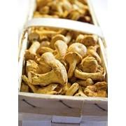 Плетеные корзинки для грибов фото