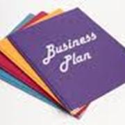 Разработка бизнес-планов, ТЭО фото