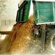 Организация приемки на элеваторах зерновых культур. фото