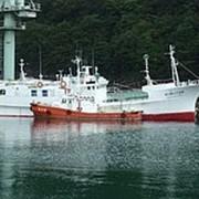 Ярусный тунцелов Судзумару 58 (Япония) фото