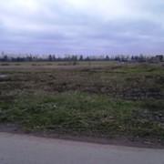 Земельный участок 5 га под ижс. фото
