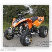 Квадроцикл CFMoto EGL Mad Max 300 фото