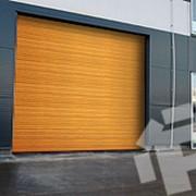 Ворота секционные, автоматика для всех видов ворот. фото