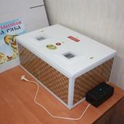 Инкубатор бытовой до 130 яиц для Выращивания молодняка индюшат фото
