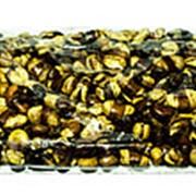 Бобы жареные соленые 250 г фото
