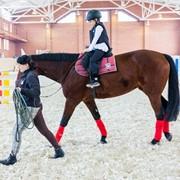 Уроки верховой езды. Навыки верховой езды. Катание на лошадях, Иппотерапия. Общение с животными. Рекреация и реабилитация вызванная стрессами и пассивным образом жизни. Повышение самооценки. фото