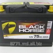 Авто аккумуляторы Black Horse фото