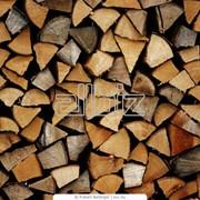 Дрова от производителя -Сырье древесное фото