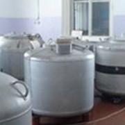 Производство и реализация спермопродукции высокоценных быков-производителей фото