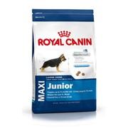 Корм для собак Royal Canin Maxi Junior 4 кг фото