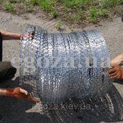 Егоза Стандарт 700/3 СББ фото