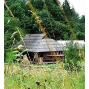Зеленый туризм, зеленый туризм в украине, зеленый туризм карпаты, сельский зеленый туризм, зелёный туризм в карпатах, зеленый туризм в закарпатье фото