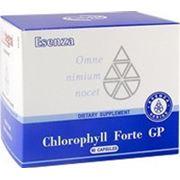 Chlorophyll Forte GP (90) [Хлорофилл Форте Джи Пи] фото